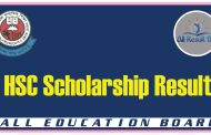 HSC Scholarship Result 2017 BD All Education Board