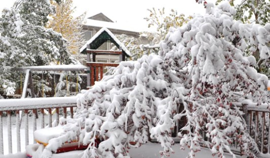 3 Common Winter Roofing Problems All Roofing Solutions