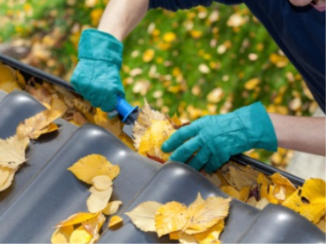 Euless Gutter Cleaning