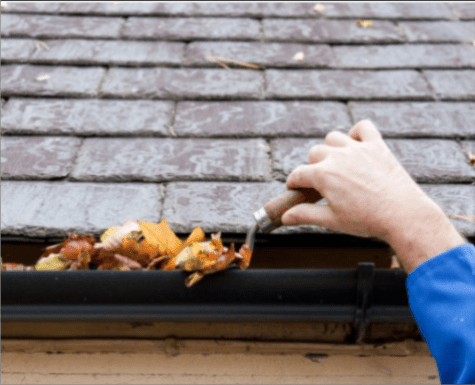 Gutter Cleaning Lake Worth