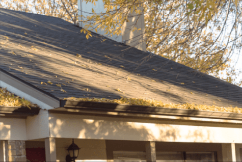 Plano Gutter Cleaning