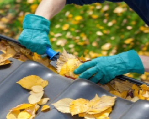 Dallas Gutter Cleaning