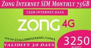 zong monthly internet offer
