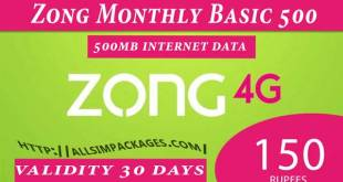 zong monthly basic 500
