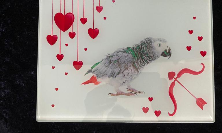 African grey and hearts chopping board