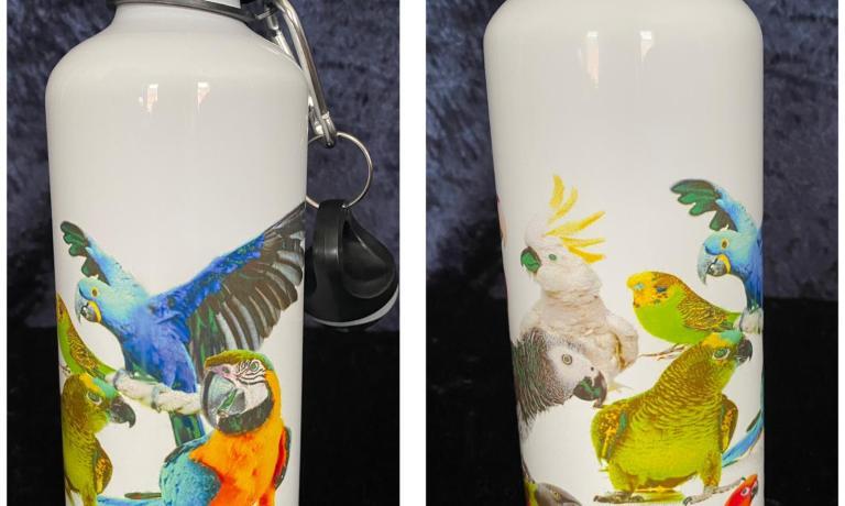 Multiple parrot water bottle