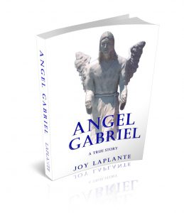 Angel Gabriel the book