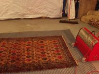 Rug Cleaning Solutions from Alltec.co.uk