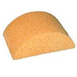 Hydra Sponge