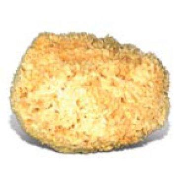 Natural Sea Sponge