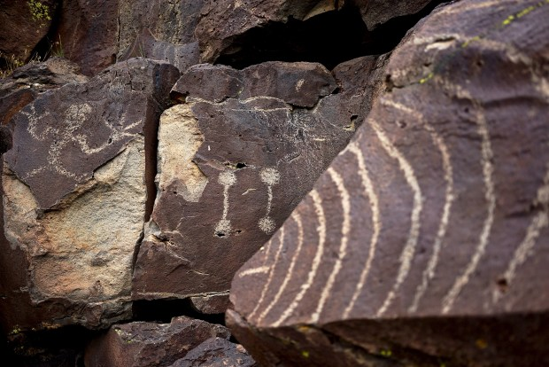 Petroglyph Panels at Lagomarsino Canyon