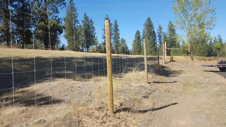 deer and elk fencing