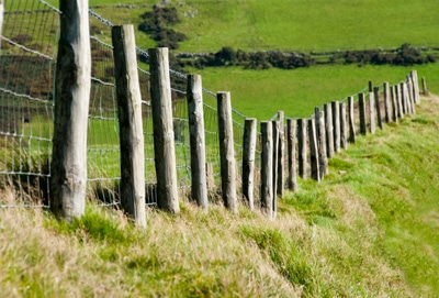 fixed knot fencing