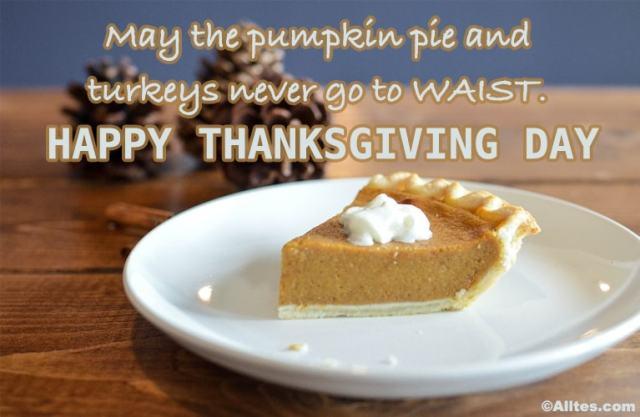 May the pumpkin pie