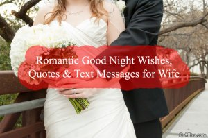 Romantic Good Night Wishes, Quotes & Text Messages for Wife
