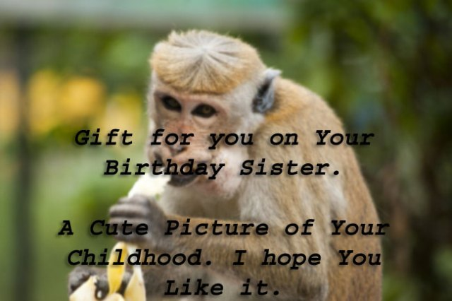 a gift for you on your birthday sister