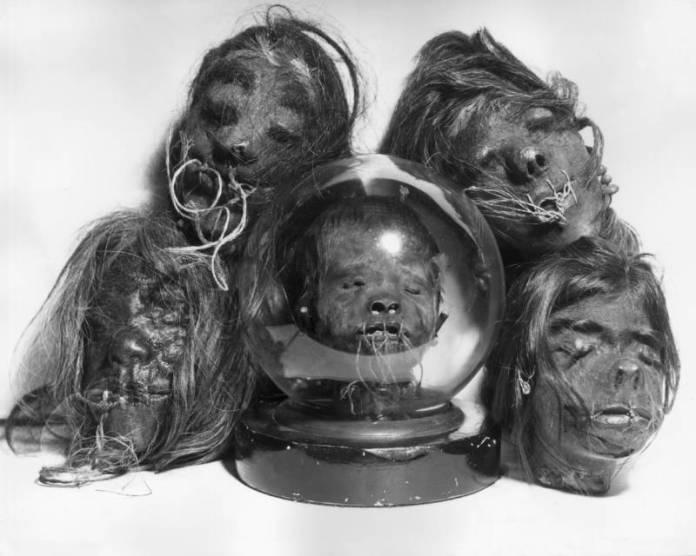 Shrunken Heads: 16 Disturbing And Authentic Tsantsa Photos