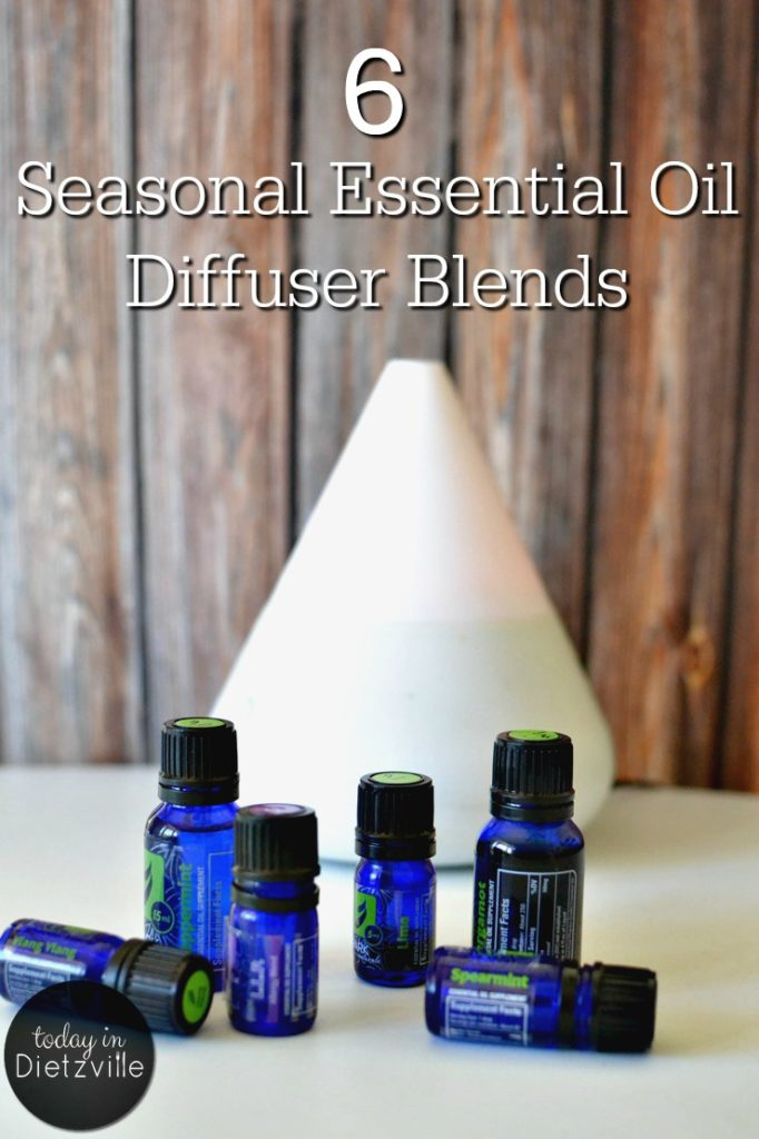 6 Seasonal Essential Oil Diffuser Blends | Essential oils not only make my air smell fresh and clean -- they actually freshen and clean the air itself! If it's a smelly good house you're after, EOs smell amazing, naturally! Here are 6 seasonal essential oil diffuser blend to delight your senses and fill your home with beneficial, immune-boosting essential oils. | AllTheNourishingThings.com