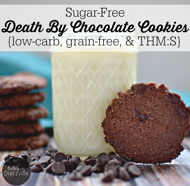 Sugar-Free Death By Chocolate Cookies {low-carb, grain-free, & THM:S} | There's something about pulling homemade cookies out of the oven that just makes me feel like a good mom. And when those cookies are grain-free and loaded with chocolate and sugar-free? Well, no one can tell me I'm not rocking this mom game. | AllTheNourishingThings.com