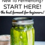 best ferment for beginners no starter culture fermented dill pickles
