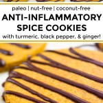 paleo anti-inflammatory spice cookies with text overlay