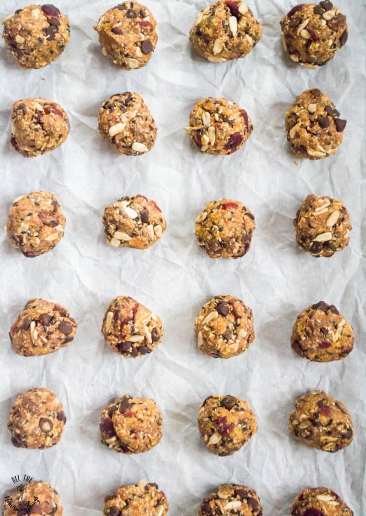 Paleo No-Bake Granola Bites (dairy-free, gluten-free, nut-free option)