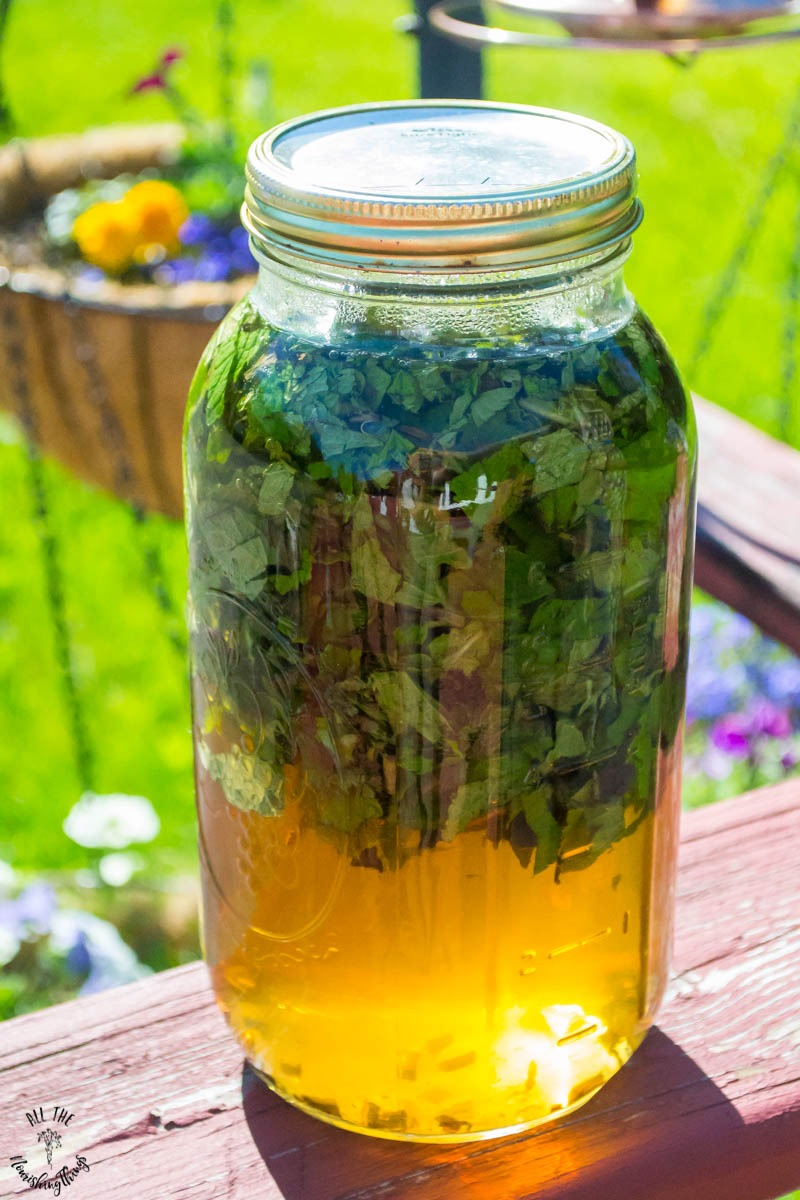 jar of fresh mint sun tea