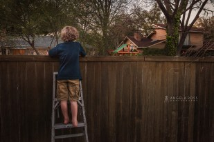 over-the-fence-angela-ross-photography