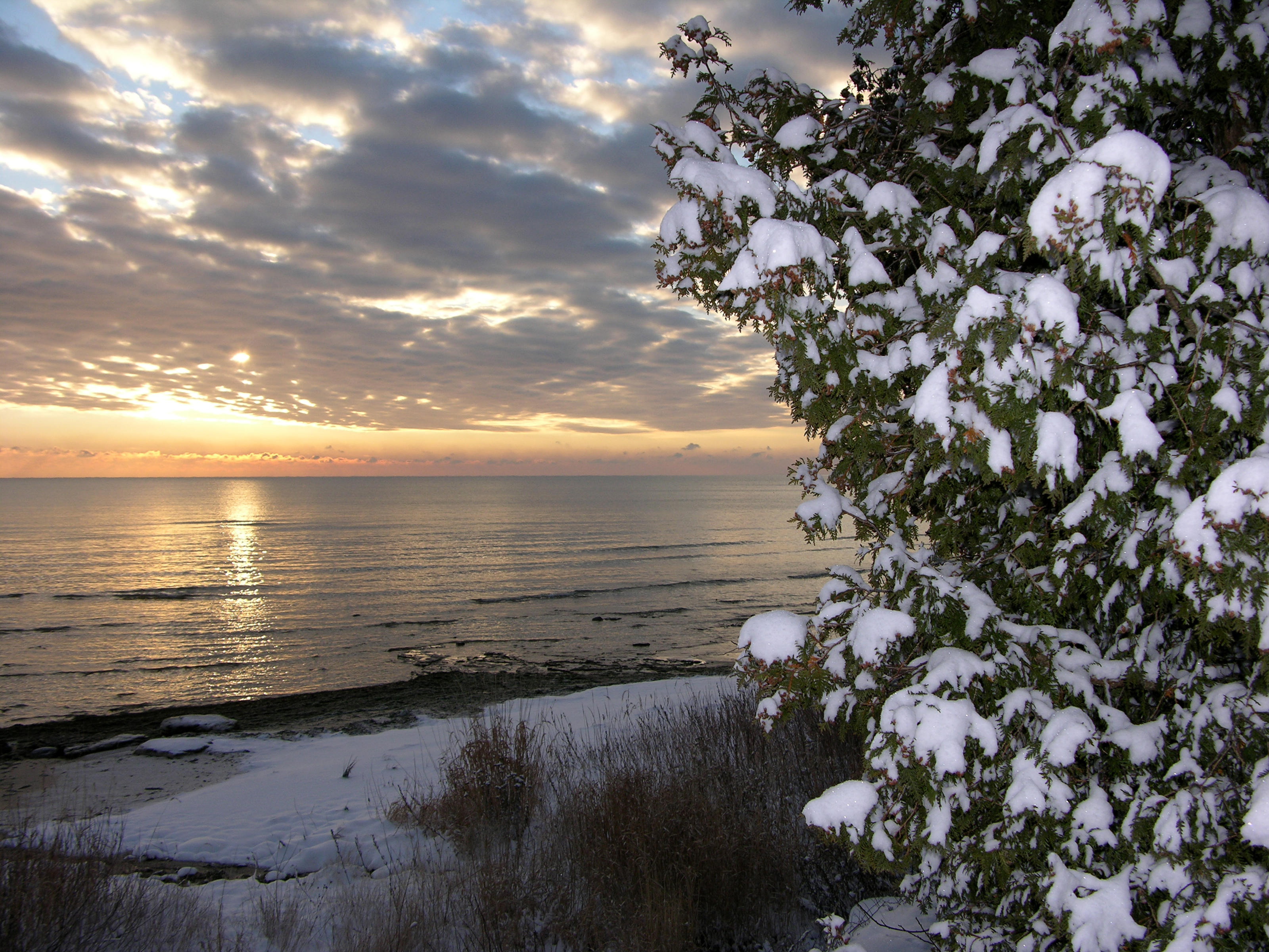 Muted sunset over water, cloudy sky, on right is partial snow-capped evergreen. Courtesy of Door County Visitor Bureau
