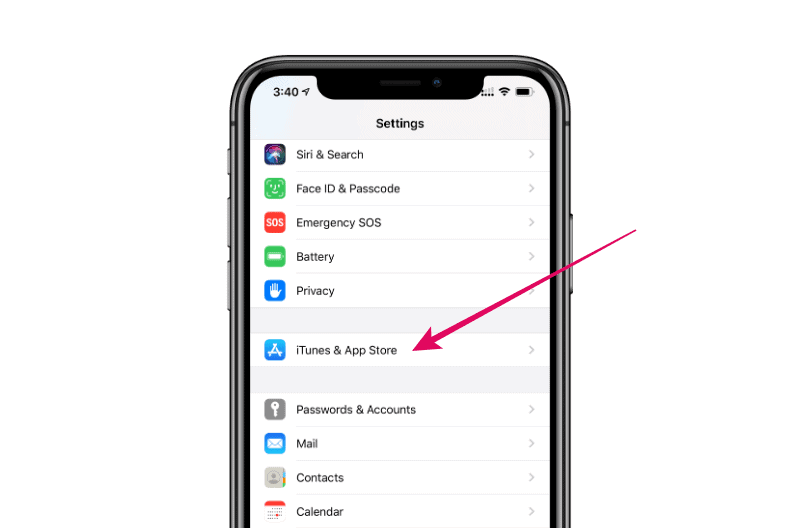 iPhone Settings Passwords & Accounts