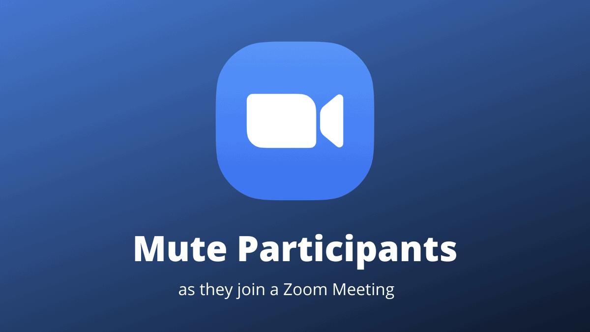 Zoom Mute Participants