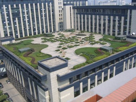 office rooftop garden