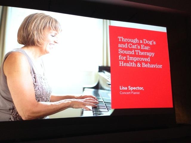 Lisa Spector - pianist