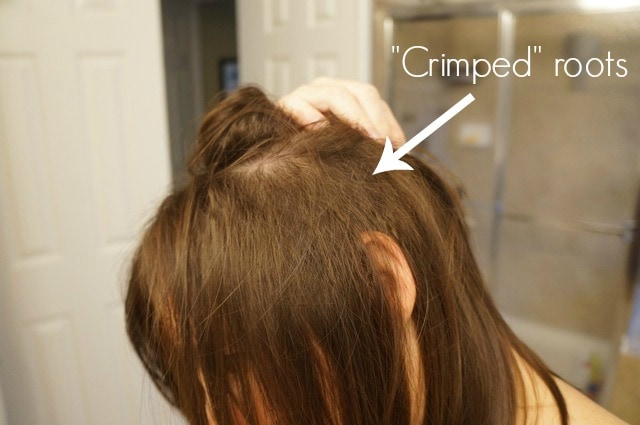 Crimped roots