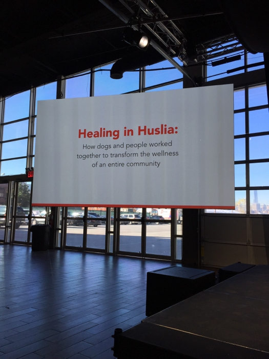 Healing in Huslia Purina #BetterWithPets