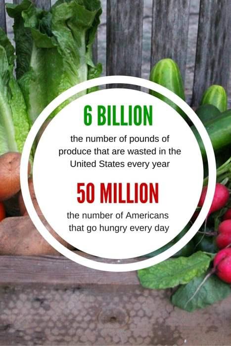 6 billion pounds of produce wasted