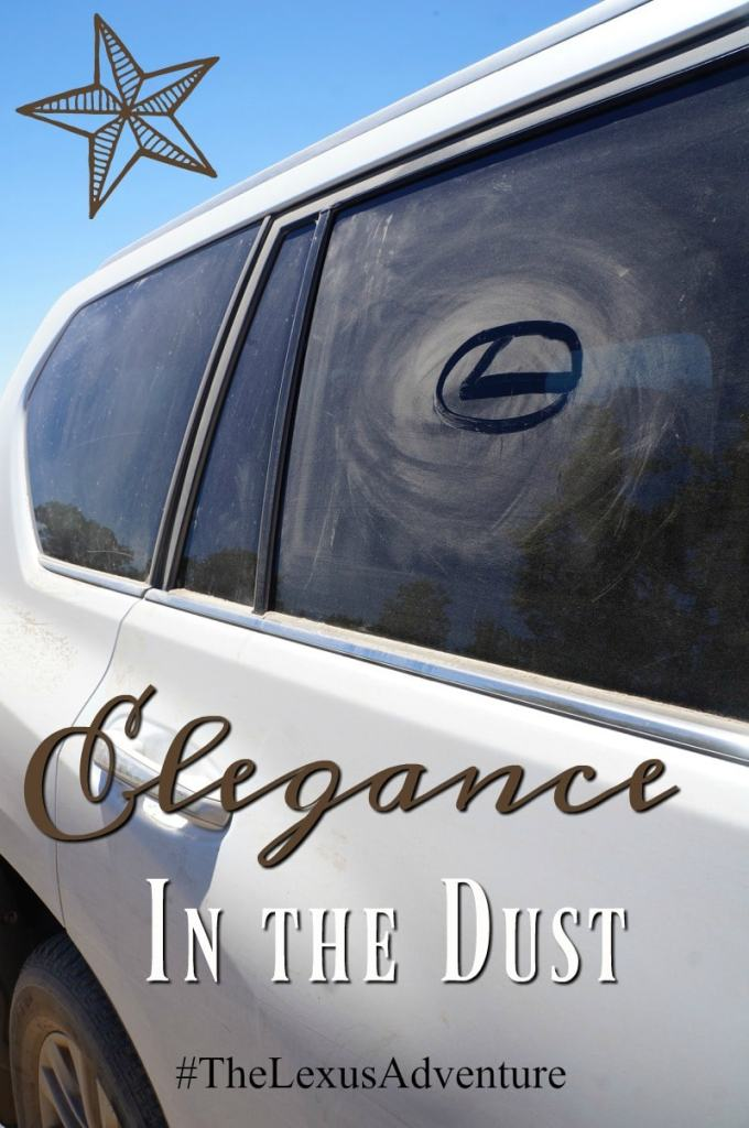 Elegance in the dust #TheLexusAdventure