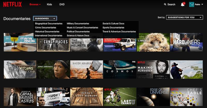 Netflix documentaries online search