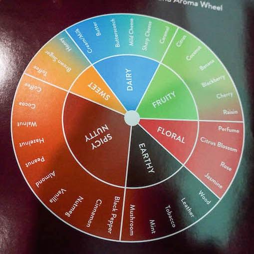 Chocolate Tasting Flavor and Aroma Wheel