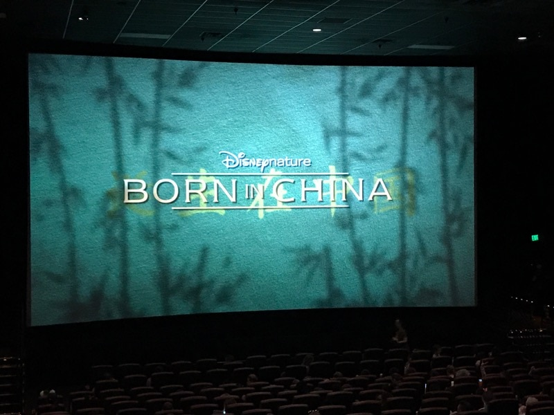 Born in China screening