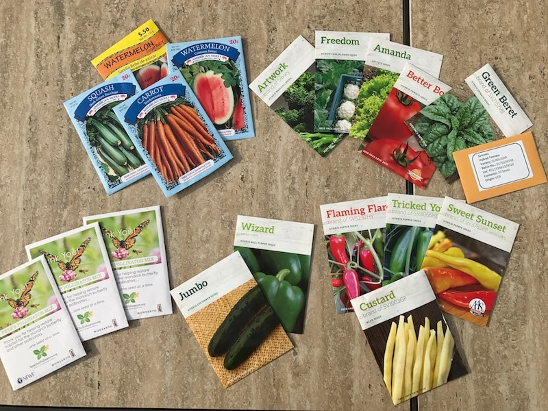 Seed starters for my garden
