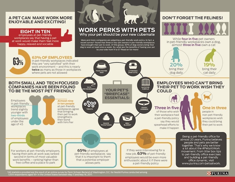 PURINA-PETS AT WORK REPORT