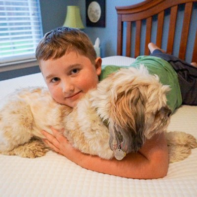 "Having ""The Talk"" With Your Pets About Back to School"