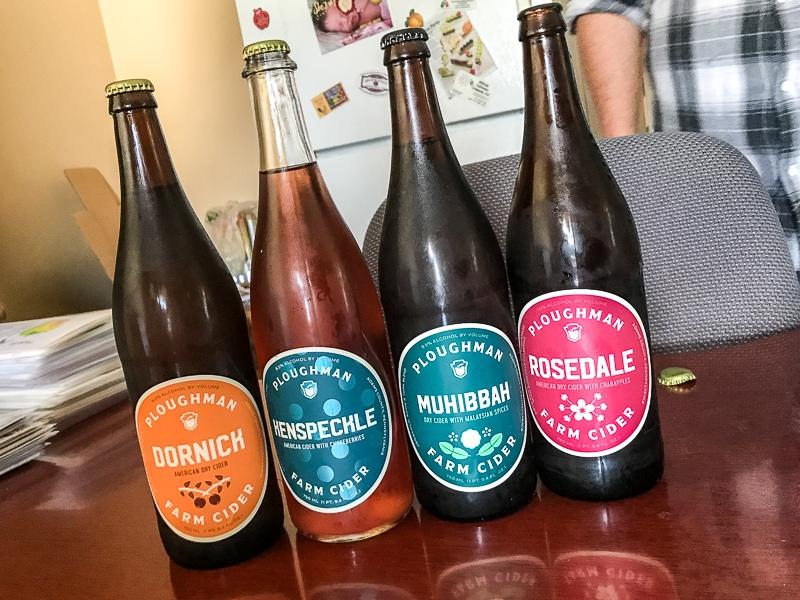 Ploughman Cider sampling