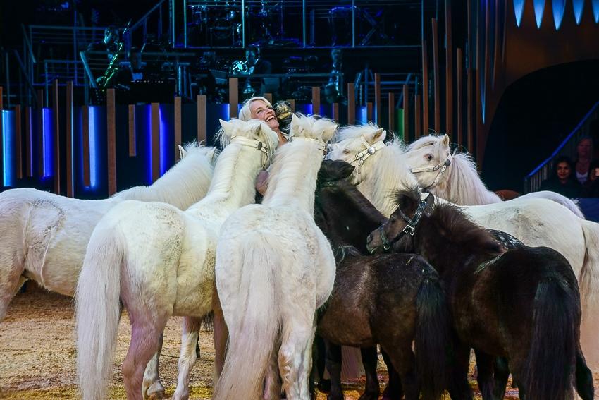 Ponies at Big Apple Circus