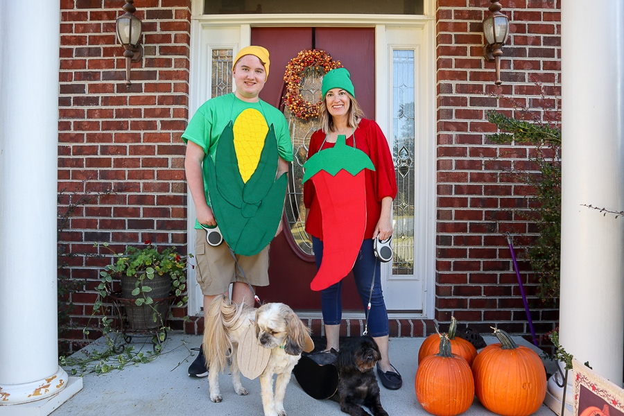 DIY Spicy Family Costumes