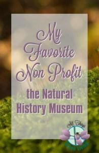 Museum non profit Pinterest