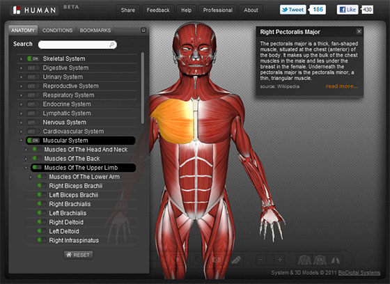 interactive human 3D anatomy Atlas BioDigital