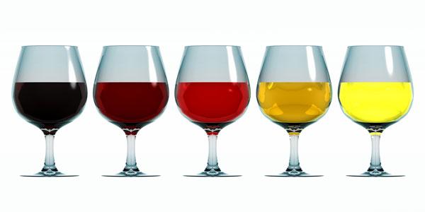 SGCEF Wine Tasting
