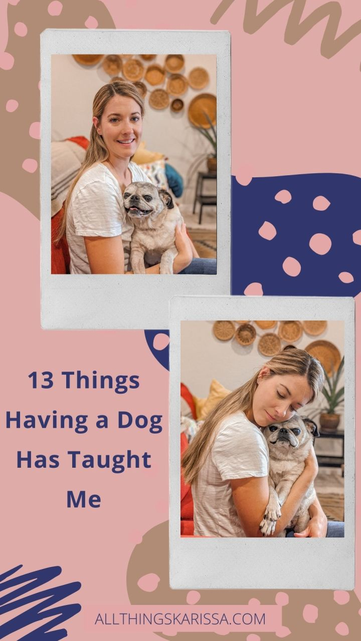 13 Things Having a Dog has Taught Me